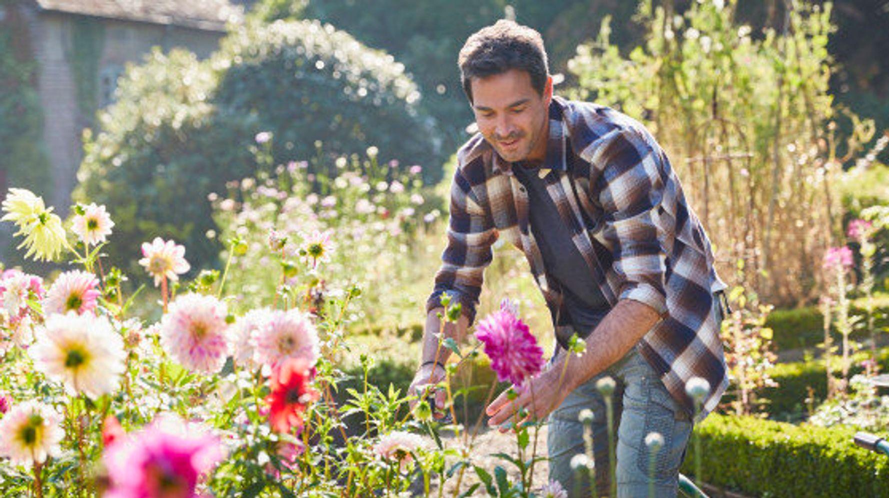 Comment Faire Un Beau Jardin 10 conseils pour transformer son jardin en petit paradis