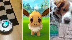 Pour tous les attraper, les joueurs de Pokemon Go ont plein