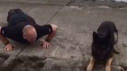 Ce chien imite un policier qui fait des pompes pour la bonne