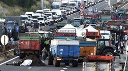 Éleveurs : levée progressive des barrages en France, mais