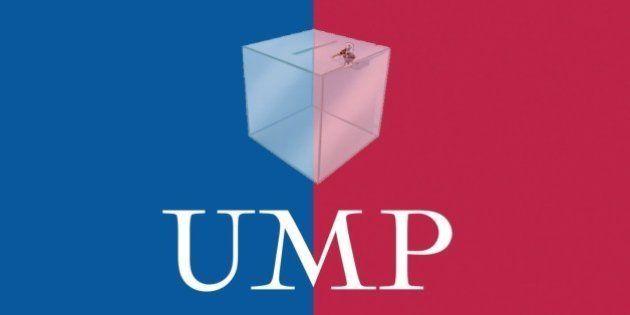 Présidence de l'UMP, fraudes, triche... Quelles garanties pour le scrutin électronique du 29