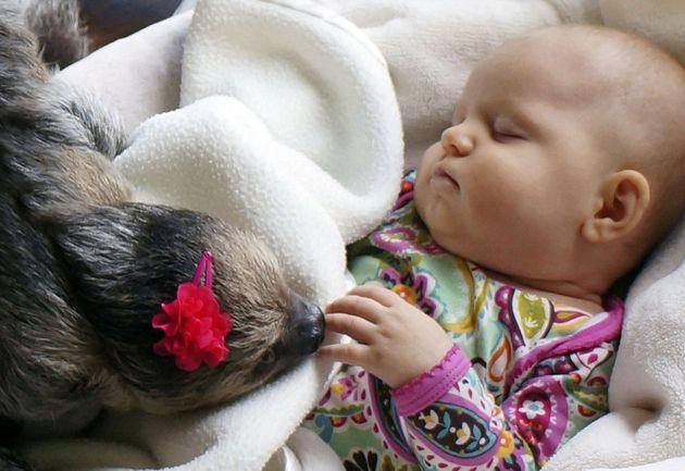 VIDÉO. Un bébé de 5 mois se prend d'affection pour un jeune