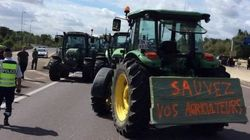 Des éleveurs installent des barrages filtrants sur l'autoroute