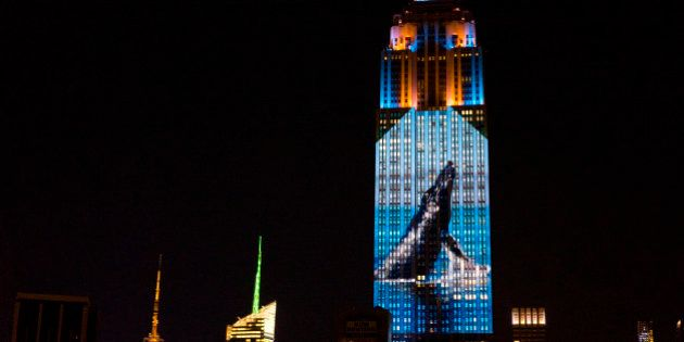 Large images of endangered species are projected on the south facade of The Empire State Building, Saturday,...