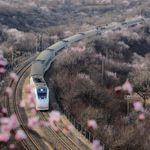 Elektromobilität und High-Speed-Train: Was Deutschland von China lernen