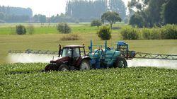 La France va devoir rendre un milliard d'euros d'aides agricoles à
