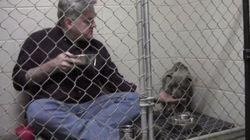 Ce vétérinaire mange avec ce chien trop effrayé pour se
