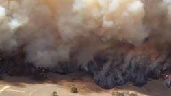 De gigantesques incendies ravagent le sud de