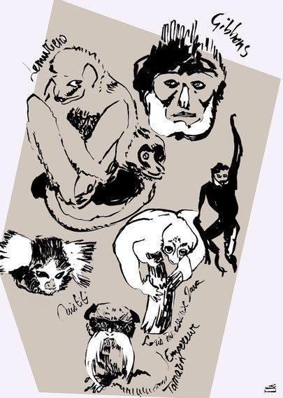 Darwin et Géricault sont à