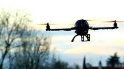 Des drones pour replanter un milliard d'arbres par