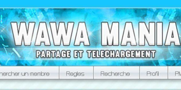 Wawa Mania: Dimitri Mader, le créateur du site pirate français, condamné à un an de prison