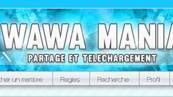 Le créateur de Wawa Mania condamné à un an de prison