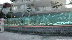 Il se fait construire un aquarium en guise de