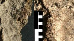 Voici la plus vieille empreinte de pied d'un