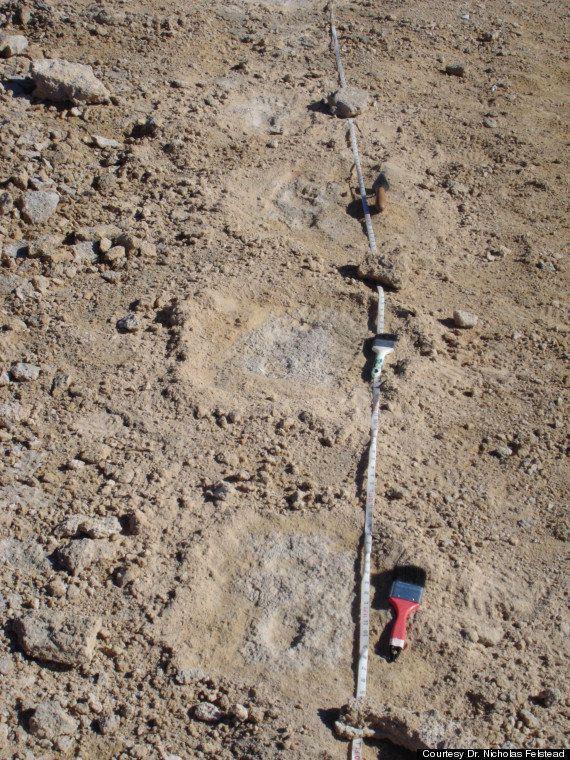 PHOTOS. Archéologie: La plus vieille empreinte de pied d'Amérique du Nord a près de 10.500