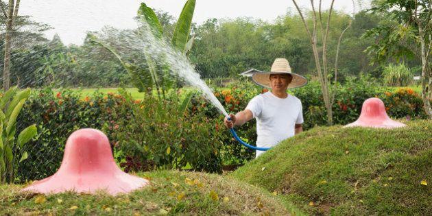 PHOTOS. En Thaïlande, un jardin...