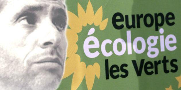 VIDÉO. Birenbaum bashe Europe Écologie Les Verts, les