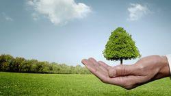 Ces événements environnementaux qui vont marquer