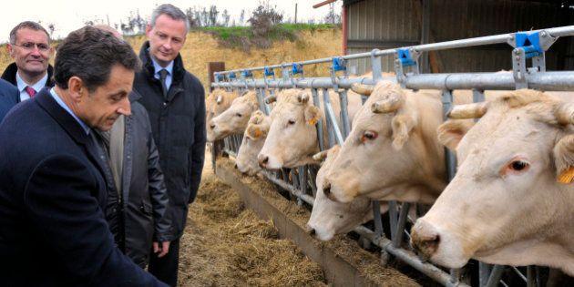 Sarkozy, Juppé, Le Maire... comment les candidats à la primaire veulent séduire au salon de