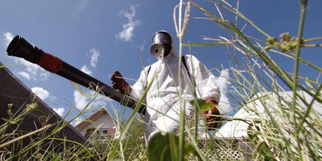 Deux insecticides épinglés pour neurotoxicité humaine par une agence de
