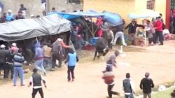 Ce taureau fou de rage a fait huit blessés dans un village