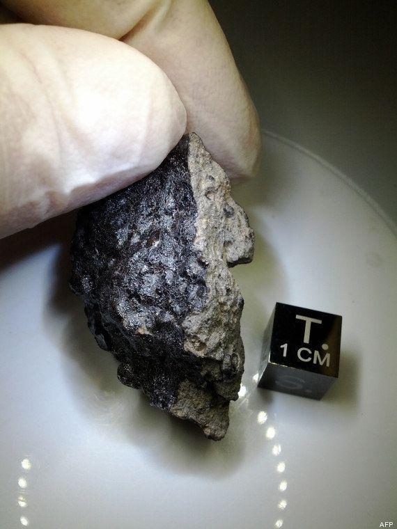 VIDÉO. Vie sur Mars: une petite météorite tombée dans le désert du Maroc relance le