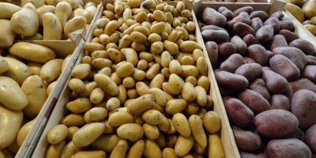 Aux Pays-Bas, des patates au sel contre la faim dans le