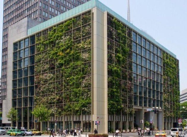 PHOTOS. Un jardin vertical sur les murs d'un building de