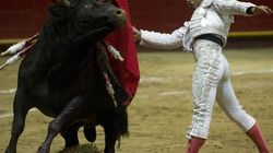 YouTube en guerre contre la corrida