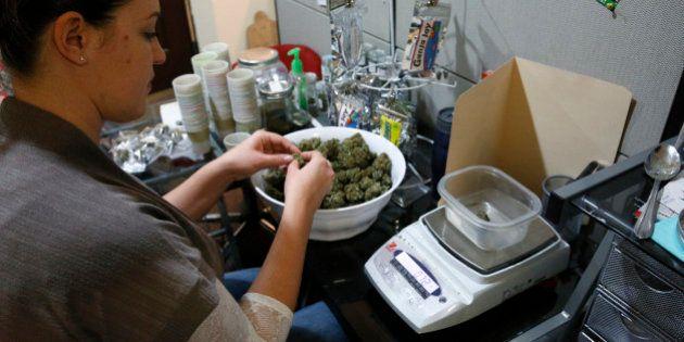 Cannabis en vente libre: les premiers