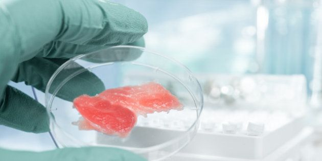 meat grown up in laboratory...