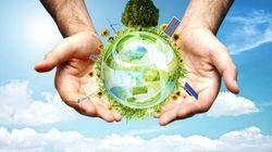 L'environnement en 2025: les infos en direct du