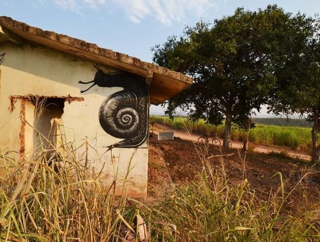 PHOTOS. Le naturaliste urbain ROA laisse sa trace en Tunisie et au