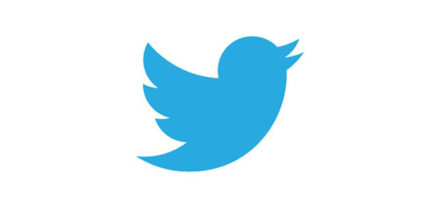 L'oiseau de Twitter retrouvé gravé sur un silex vieux de 35.000
