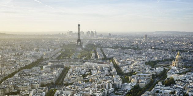 Aerial view of Paris cityscape, Paris, Ile de France,