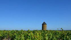 Anthologie du vin et de l'ivresse en