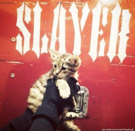 PHOTOS. Slayer, le groupe de metal, sauve un