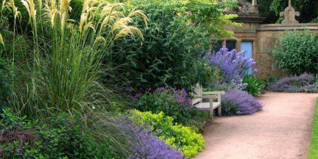 Comment désherber son jardin sans produits chimiques | Le ...