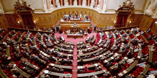 Déchéance: le Sénat adopte sa propre version de la révision