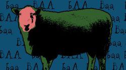 Les moutons de l'Aïd à vendre sur le