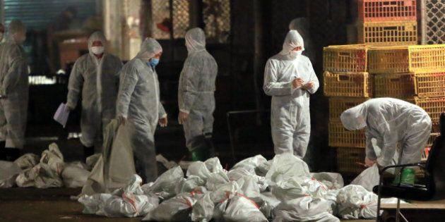 Grippe aviaire: la nouvelle souche H7N9 fait 6 victimes en Chine, Shangai ferme son marché aux