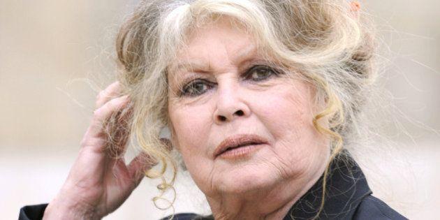 Aïd el Kebir: Brigitte Bardot critique