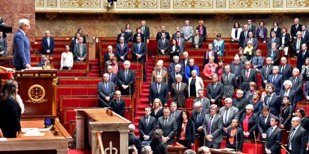 Ces députés qui trollent la réforme de la Constitution avec des propositions qui n'ont rien à