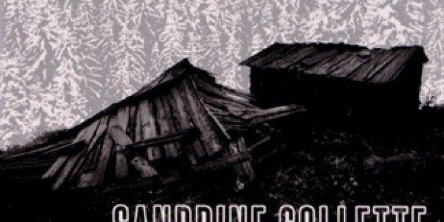 Polars et romans noirs pour nuits blanches: