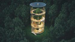 Cette incroyable maison va vous donner envie de vivre dans les