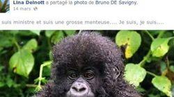 Taubira comparée a un gorille par une élue