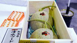 Le prix des fruits au Japon peut s'envoler, la preuve avec ces melons vendus plus de 11.000