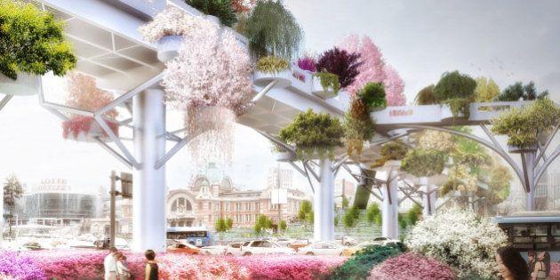 PHOTOS. Un jardin suspendu au cœur de Séoul pour transformer une autoroute