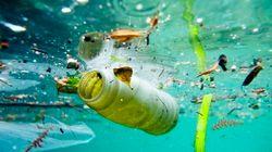 Garder l'espoir face à la pollution plastique des