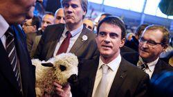 3G, maisons de services, etc.: Les annonces de Valls pour les